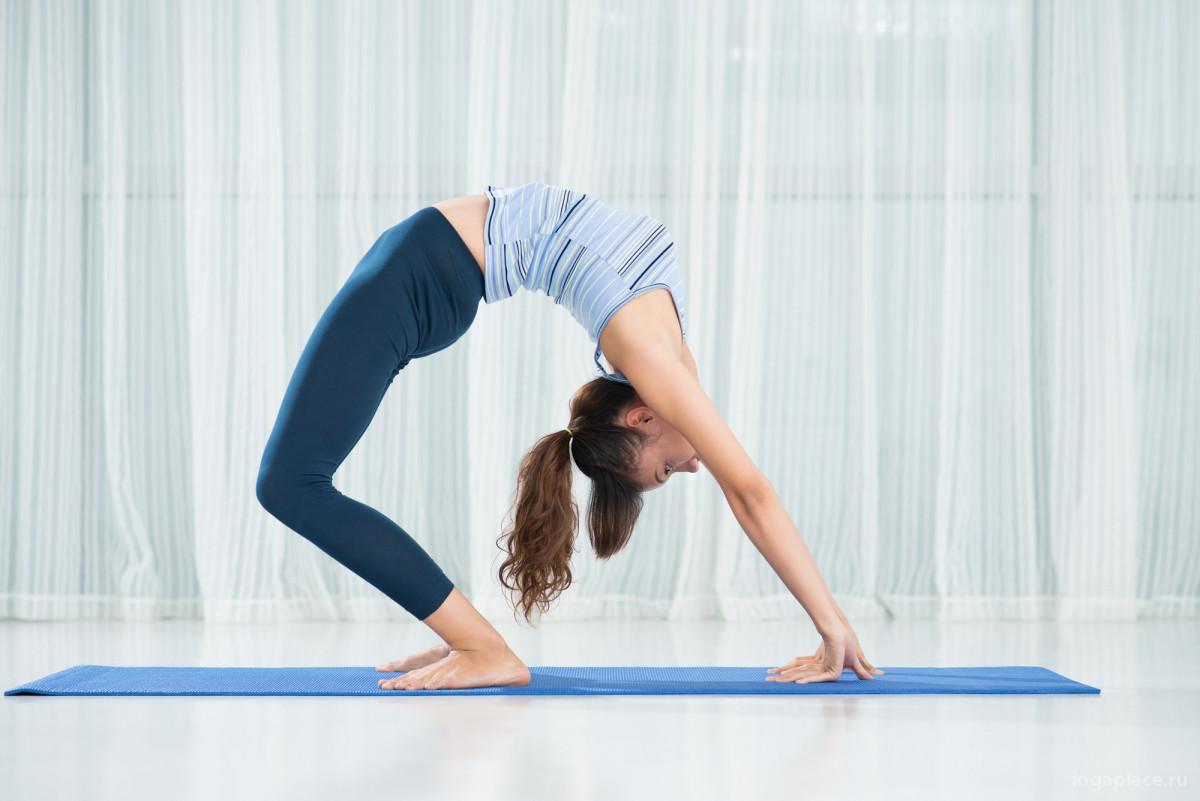 Выбираем тип йоги: на что стоит обратить внимание